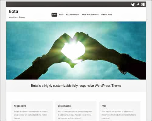 theme wordpress bota