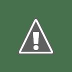 Tatang Farhanul Hakim