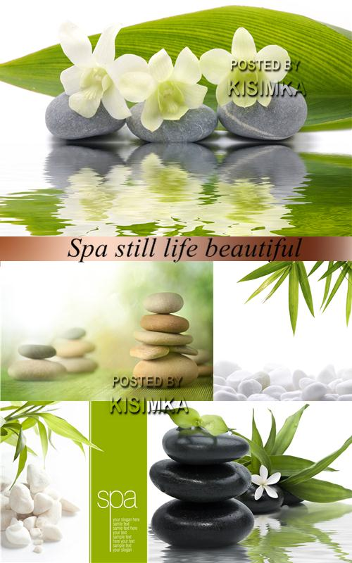 Stock Photo: Spa still life beautiful 2