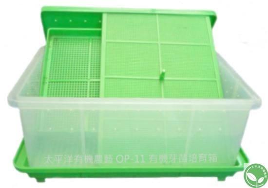透明有機芽菜箱