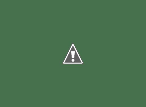 spectrophotometre44