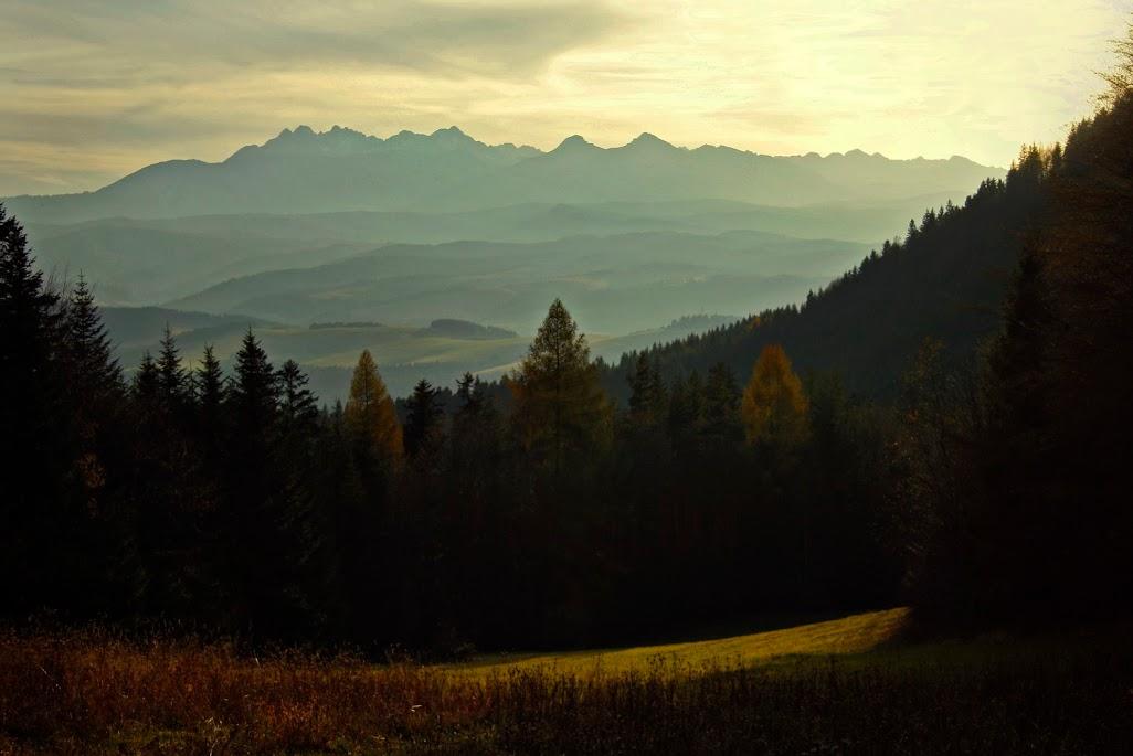 Tatry z Przełęczy Szopka (Chwała Bogu)