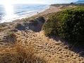 Песчаные дюны Марбельи