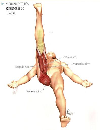 alongamento para músculos posteriores da coxa