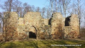 Na zdjęciu Gryżyna - ruiny KOścioła z XIII wieku