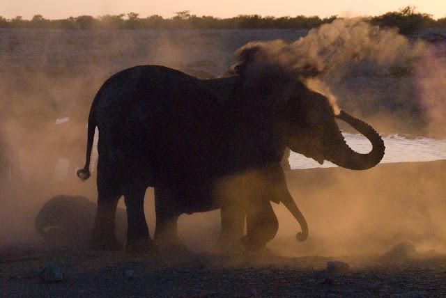 أفضل ما في أفريقيا  Best of Africa Namibia_090907111746