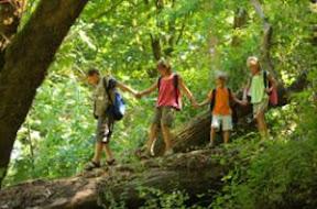 Ecotips – Inscribe A Tus Hijos En Un Curso De Verano Ecológico – 324