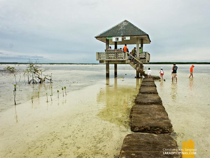 The Bird Viewing Deck at Olango Island Wildlife Sanctuary in Cebu