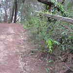 Access to Wallingat River