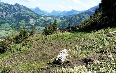Blick Tannheimer Tal Oberjoch