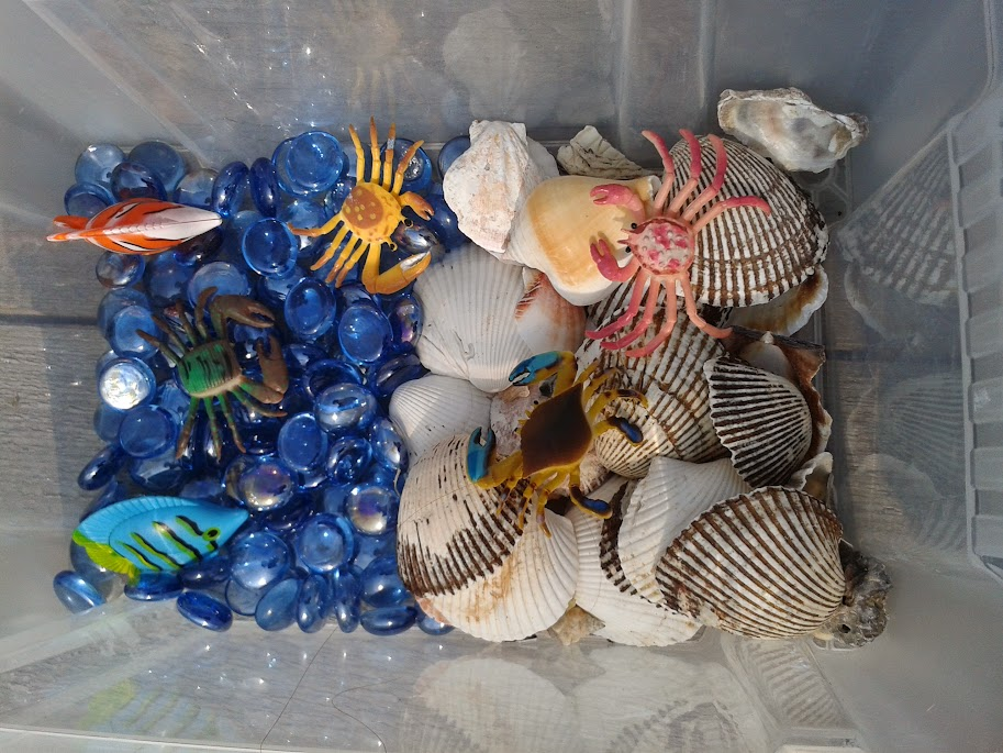 Welcome to Mommyhood: Sea sensory bin