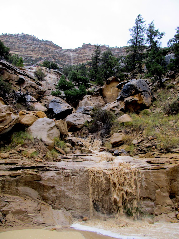 Waterfall in Straight Canyon