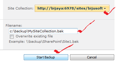 Backup SharePoint 2010 Site collection