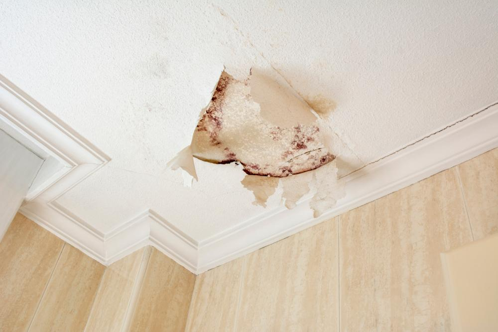 Signs that indicate your roof is leaking.jpg