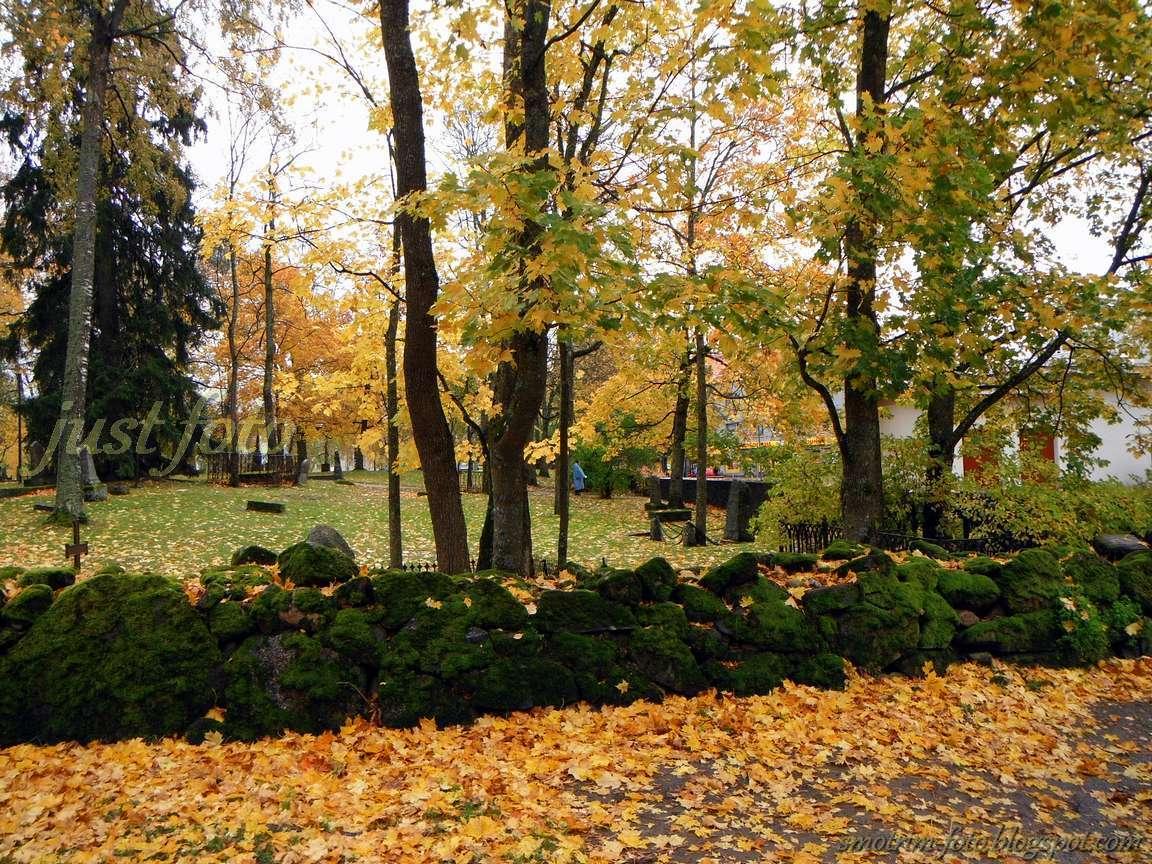 Осенние краски в Лаппеенранте фото