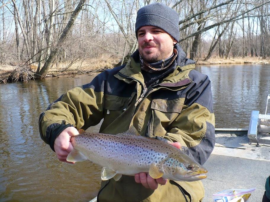 Pere Marquette River Brown Trout
