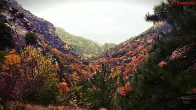 Spil Dağı Oduncu Vadisi Sonbahar Güzellikleri