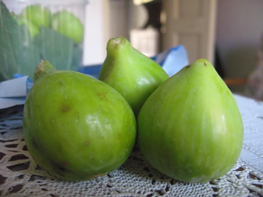 Figs from the Scordo farm in Calabria