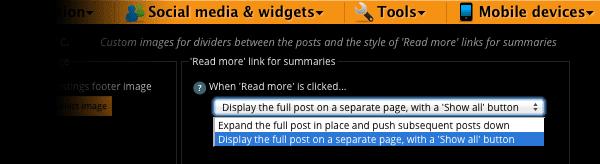 Blog summary options