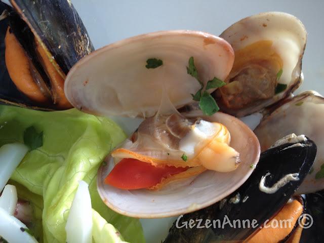 Sorrento'da La Kambusa'daki deniz mahsulleri salatasındaki deniz tarağının tazeliği