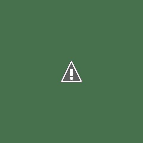 雪でどせいさん作ったよ