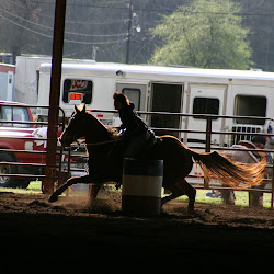 Towne Lake Equestrian Club's profile photo