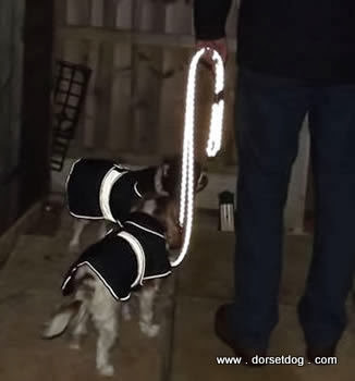 Lazy Dogs reflective leads, made by Den Marketing