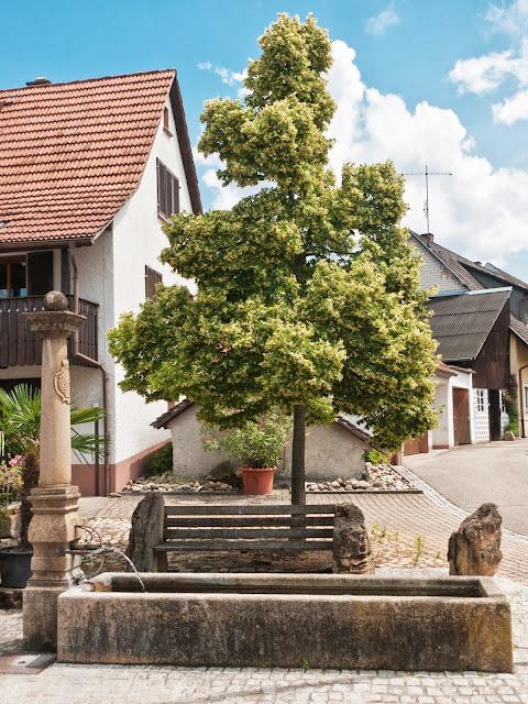Dorfbrunnen Dattingen