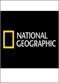 documentario Download   NatGeo   Animais Raros do Céu HDTV   Dublado