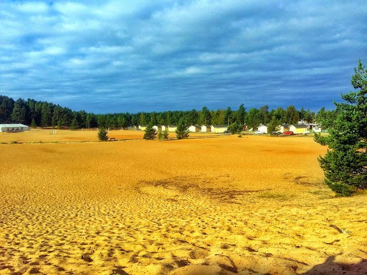 The sand dunes of Kalajoki, Finland.