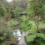 view of a Waitara Creek branch (60719)