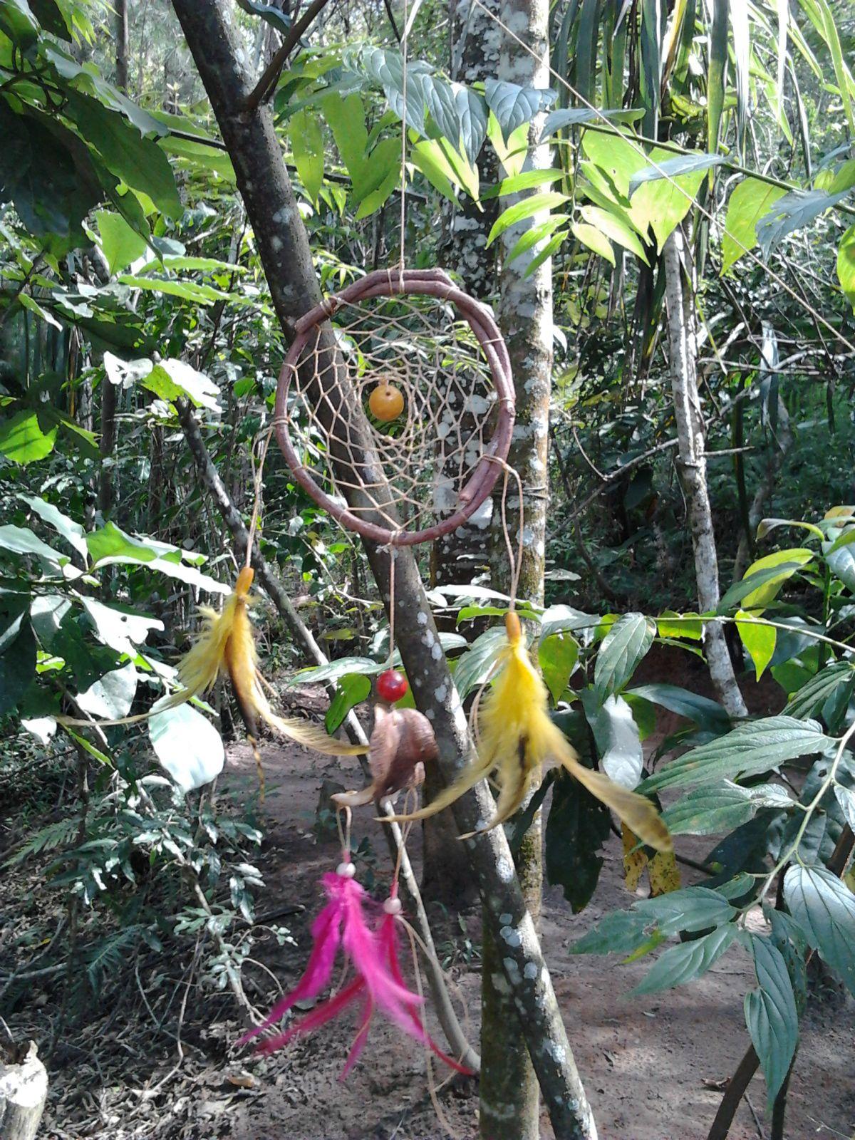 Preferência O CANTO DOS TAMBORES - Xamanismo: Filtro de Sonho WA57