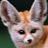 Redlovers Aj avatar image