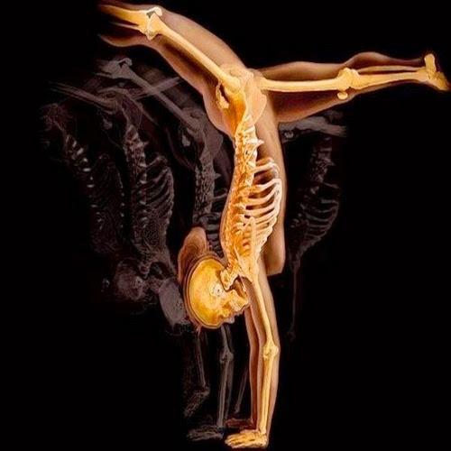 Лечение костей