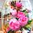 Donna Cruz avatar image