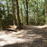 Seat on the Tall Trees walk in Blackbutt Reserve (400237)