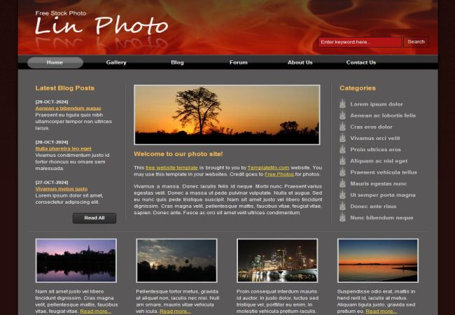 Sunset Fire Black CSS Website Template