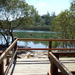 Mangrove viewing platform (344761)