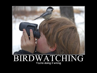 motivational birdwatching you are doing it wrong, motivational posters, motivational pictures, motivational funny, motivational funny pictures, motivational birdwatching, motivational you are doing it wrong, you are doing it wrong