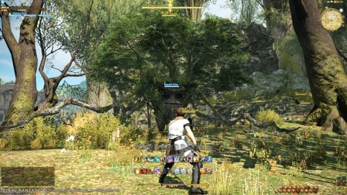 ffxiv Final Fantasy XIV: A Realm Reborn (PS3/PC)   Beta Preview
