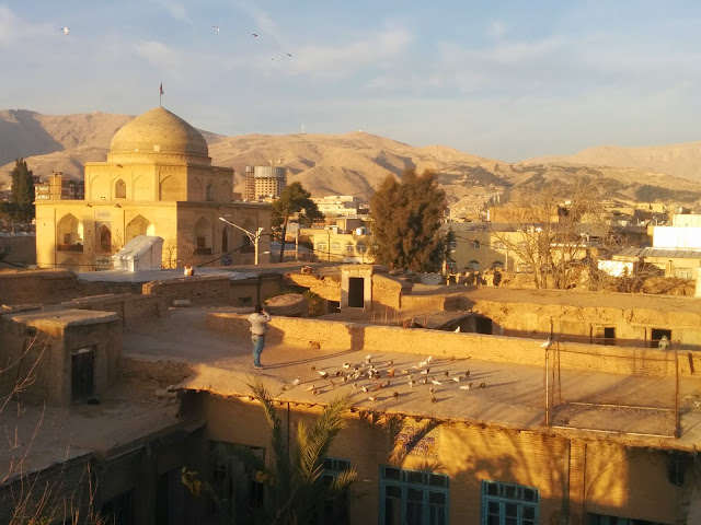 Shiraz view from Niayesh Boutique Hotel rooftop
