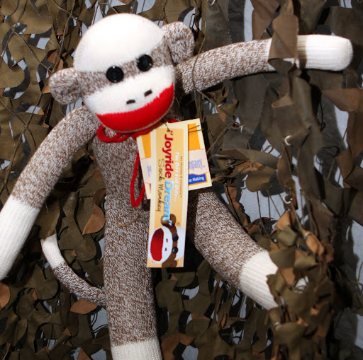 Kia Monkey Pictures News Information From The Web