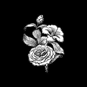 نحو كوكب مسلم سكرابز ابيض واسود سكرابز أبيض و أسود ستوكات رسم بالرصاص ستوكات Scrubs Black And White Black And White Scrubs Stoke Draw Microfiber Stoke