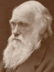 Darwin1874s