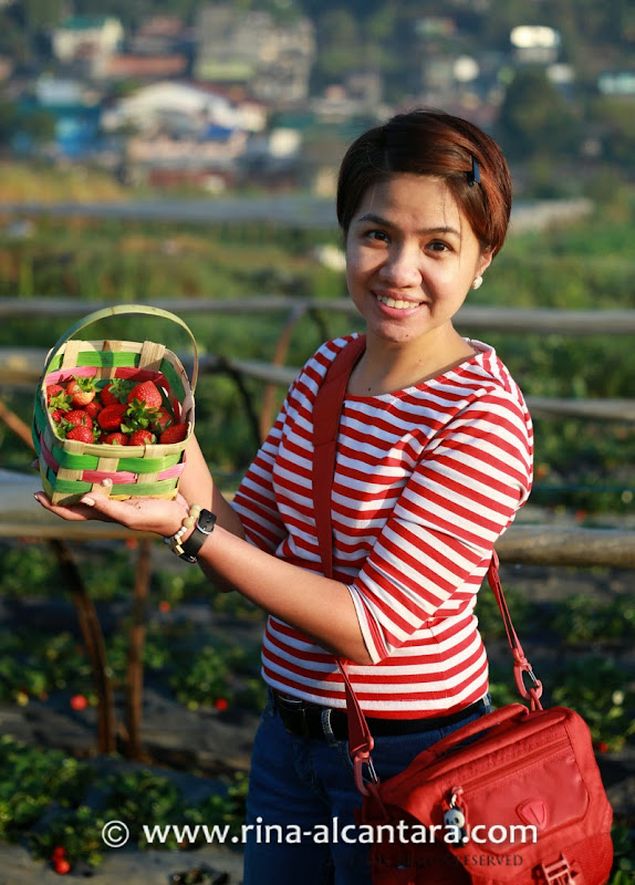 Simply Rins a Basket of Strawberries