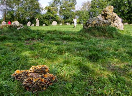 The Rollright Stones And Autumn Equinox Celebrations