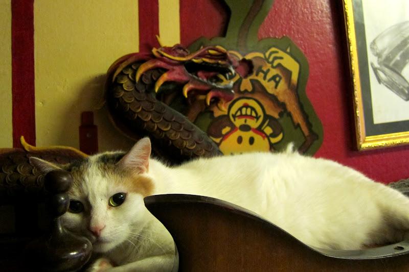 Inkstanbul kitty