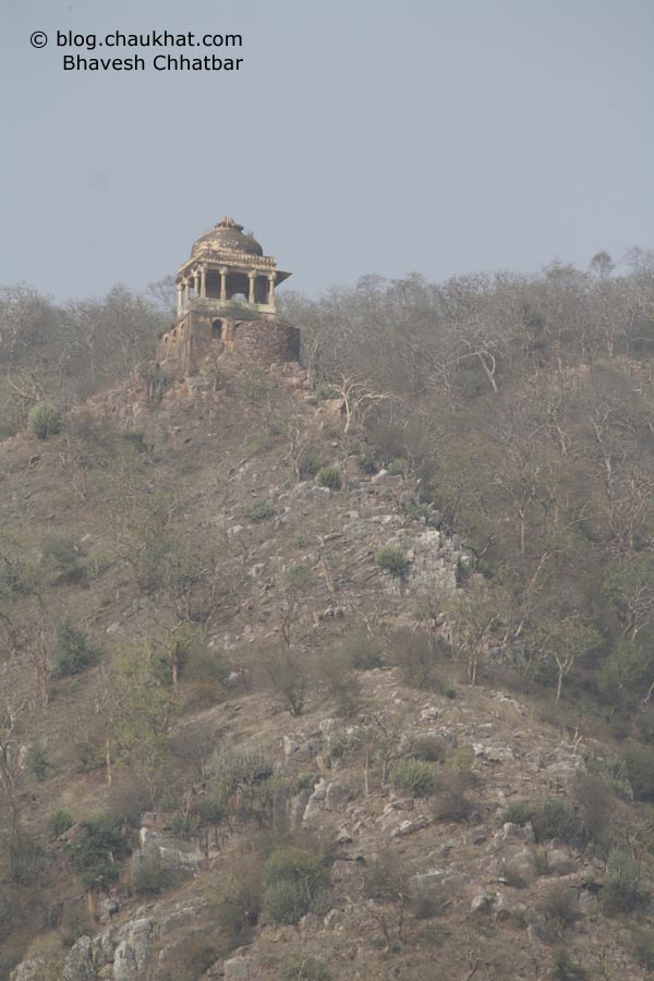 Bhangarh - Umbrella on Hilltop