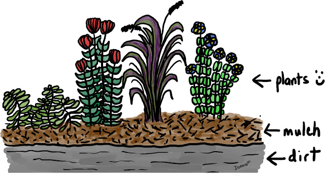 Plants benefit from a 3 to 5 inch layer of mulch.