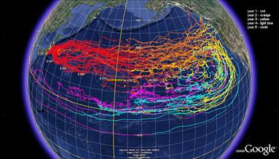 Japan's tsunami debris heads towards North America